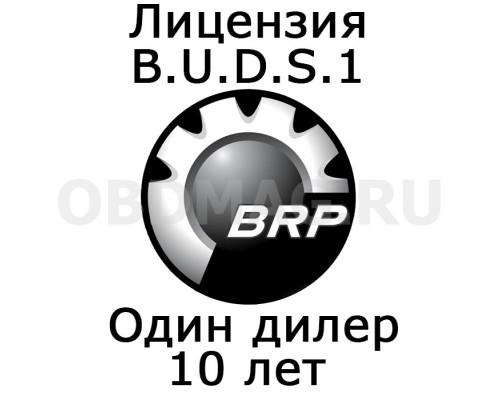 """Лицензия BUDS 1 """"Один дилер"""" 10 лет"""