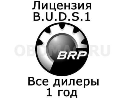 "Лицензия BUDS 1 ""Все дилеры"" 1 год"