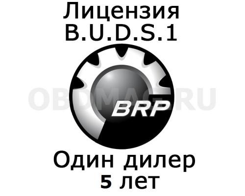 """Лицензия BUDS 1 """"Один дилер"""" 5 лет"""